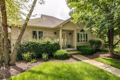 2216 Durand Drive, Downers Grove, IL 60515 - #: 10294563