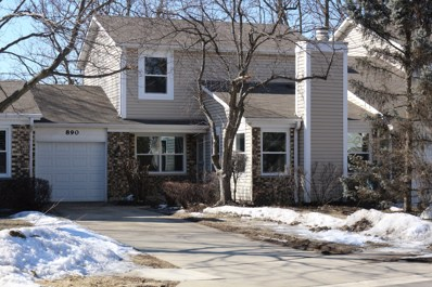 890 Colony Lake Drive, Schaumburg, IL 60194 - #: 10294981