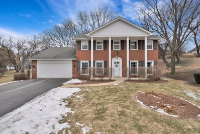 1503 Snowberry Court, Downers Grove, IL 60515 - #: 10294998
