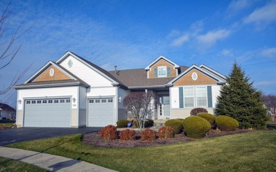 12704 Sycamore Court, Huntley, IL 60142 - #: 10295219