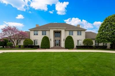 9253 W Golfview Drive, Frankfort, IL 60423 - MLS#: 10295391