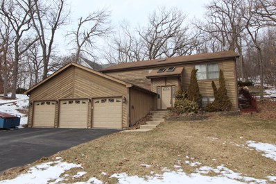1180 Deerpath Court, Fox Lake, IL 60020 - #: 10295669