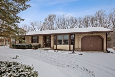 1704 Nish Road, Crystal Lake, IL 60012 - #: 10295746