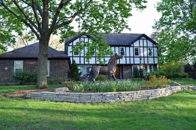 1630 Picardy Court, Long Grove, IL 60047 - #: 10295775