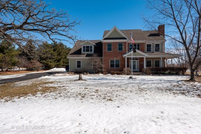 4810 Inmans Way, Ringwood, IL 60072 - #: 10295848
