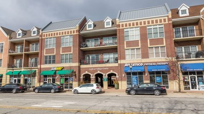 40 E Northwest Highway UNIT 208, Mount Prospect, IL 60056 - #: 10296112