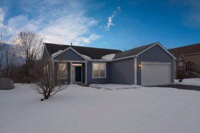 241 Nuthatch Drive, Woodstock, IL 60098 - #: 10296232