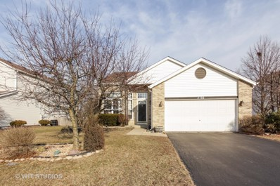 2102 Winding Lakes Drive, Plainfield, IL 60586 - #: 10296612