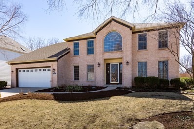 2620 Wild Timothy Road, Naperville, IL 60564 - #: 10296617
