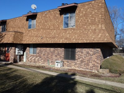 1101 Elizabeth Court UNIT 1, Crest Hill, IL 60403 - MLS#: 10297062