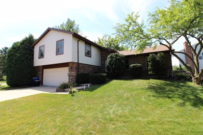 6363 Hastings Lane, Lisle, IL 60532 - #: 10297239