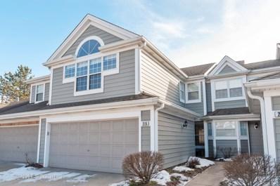 215 Woodstone Drive, Buffalo Grove, IL 60089 - #: 10297497