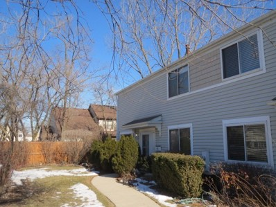 816 Coventry Place UNIT 107A, Wheeling, IL 60090 - MLS#: 10297812