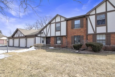 325 Oak Meadow Court UNIT B1, Schaumburg, IL 60193 - #: 10298148
