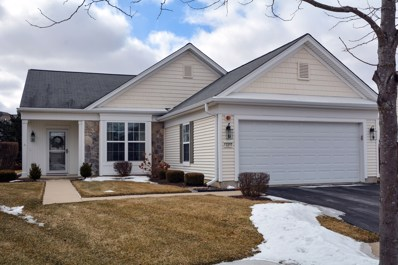 13297 Silver Birch Drive, Huntley, IL 60142 - #: 10298543