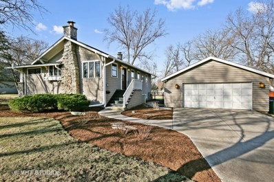 254 Traver Avenue, Glen Ellyn, IL 60137 - #: 10299069