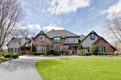 814 Braeburn Road, Inverness, IL 60067 - #: 10299131