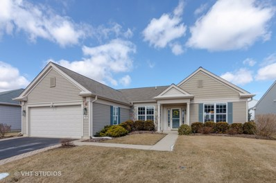 13634 Ivy Drive, Huntley, IL 60142 - #: 10299280