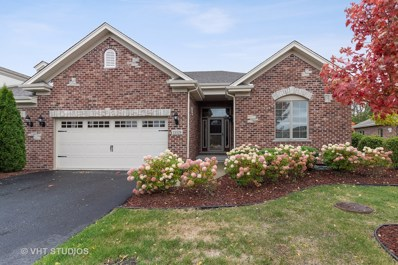 19328 S Whisper Creek Circle, Mokena, IL 60448 - #: 10299313