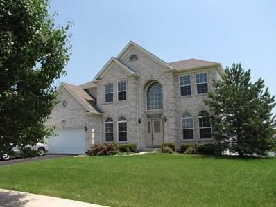 13621 Arborview Boulevard, Plainfield, IL 60585 - #: 10300338