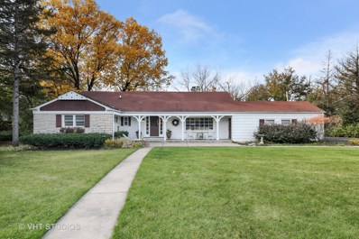 408 N River Glen Avenue, Elmhurst, IL 60126 - #: 10300404
