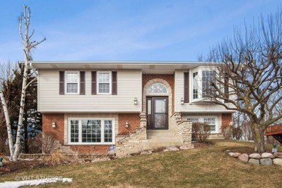 222 Mayer Avenue, Wheeling, IL 60090 - #: 10300440