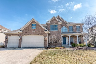 25735 Meadowland Circle, Plainfield, IL 60585 - #: 10301126