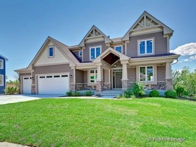 6604 Carl Court, Woodridge, IL 60517 - #: 10302004