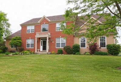 11 Hawthorn Grove Circle, Hawthorn Woods, IL 60047 - MLS#: 10302005