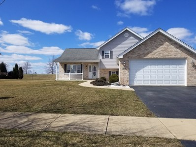 30916 Slalom Lane, Wilmington, IL 60481 - #: 10302406