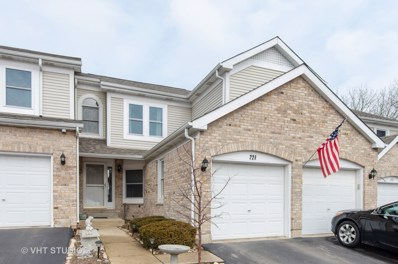 228 Haber Court, Cary, IL 60013 - #: 10302538