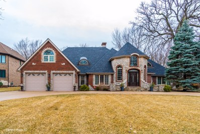 397 E Deerpath Road, Wood Dale, IL 60191 - #: 10303023