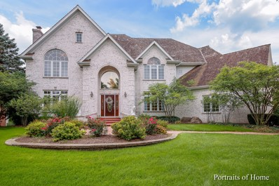 120 Settlers Drive, Naperville, IL 60565 - #: 10303254