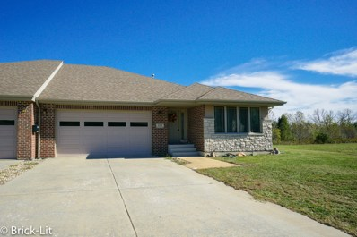 322 River Run Drive, St. Anne, IL 60964 - MLS#: 10303541