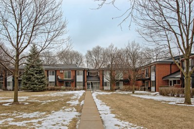 2432 E Brandenberry Court UNIT 1E, Arlington Heights, IL 60004 - #: 10303552