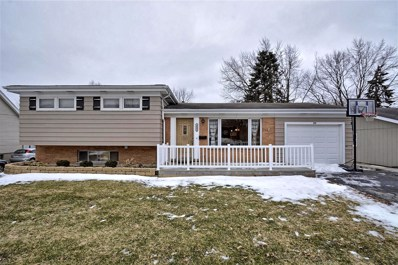 215 E Woodworth Place, Roselle, IL 60172 - #: 10304089