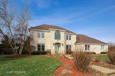 1569 White Eagle Drive, Naperville, IL 60564 - #: 10304951