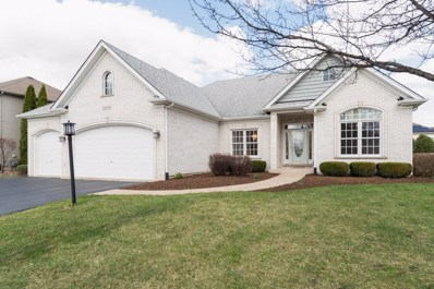 13339 Blackstone Lane, Plainfield, IL 60585 - MLS#: 10305438