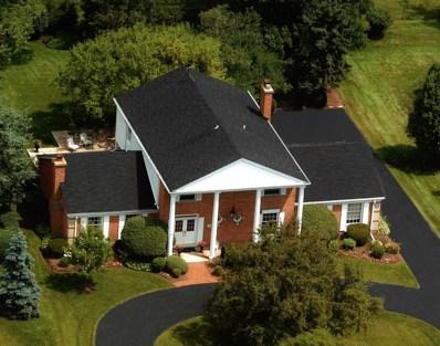 119 Stirrup Lane, Burr Ridge, IL 60527 - #: 10306033