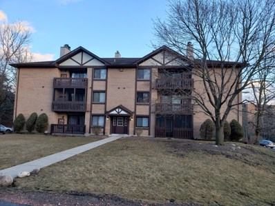 6015 Lakeside Place UNIT 103A, Tinley Park, IL 60477 - MLS#: 10306324