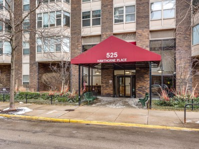 525 W Hawthorne Place UNIT 2902, Chicago, IL 60657 - #: 10307178