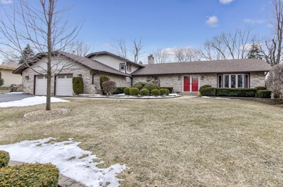 1232 Indian Hill Drive, Schaumburg, IL 60193 - #: 10307378