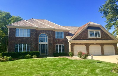 2475 W West Branch Court, Naperville, IL 60565 - #: 10307494