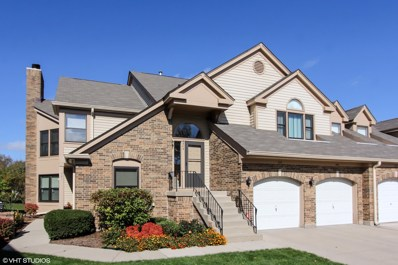 343 Satinwood Court S UNIT 10, Buffalo Grove, IL 60089 - #: 10307573