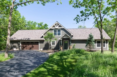 6503 Sycamore Court, Mchenry, IL 60050 - #: 10308483