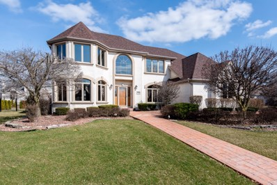 17141 Kerry Avenue, Orland Park, IL 60467 - MLS#: 10308775