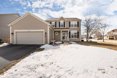 5482 Savoy Drive, Lake In The Hills, IL 60156 - #: 10308970