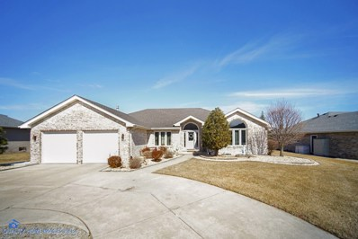 8020 174th Place, Tinley Park, IL 60477 - MLS#: 10309010