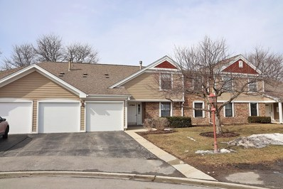 220 Oak Knoll Court UNIT B1, Schaumburg, IL 60193 - #: 10309062
