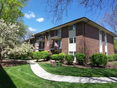 5S066  Pebblewood UNIT B6, Naperville, IL 60563 - #: 10309126